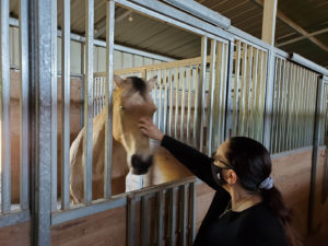 Equestrian Therapy Image 3