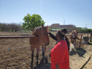 Equestrian Therapy Image 8