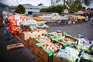 Food Bank Image 1