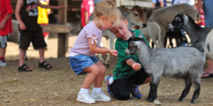 Petting Zoo Background